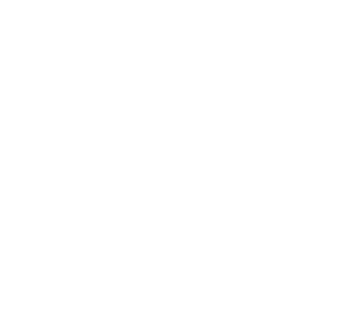 Ferplay